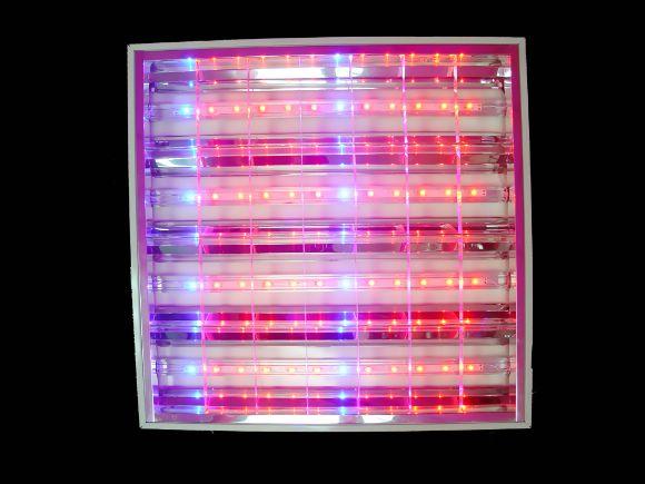 植物光HIGH POWER LED Grow lights可調光式高功率植物栽培用燈 / 植物燈(輕鋼架)(TMCGGL48W-TR)